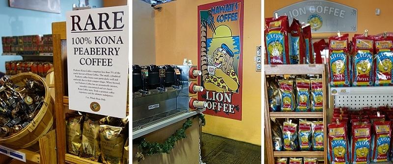 lion-cafe2.jpg