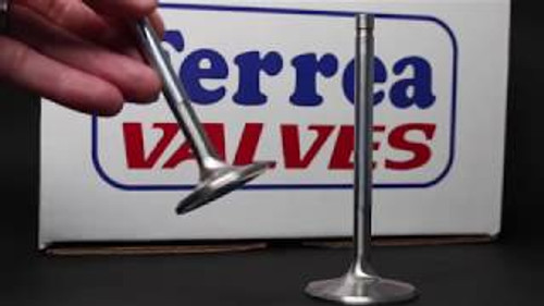 Ferrea - 6000 Series Valves Honda/Acura B-Series VTEC (Set of 16)