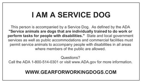 Service Dog Gear | Service Dog Vests, Patches and Tags