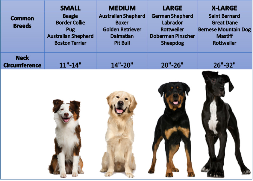 dog-collar-size-chart.jpg