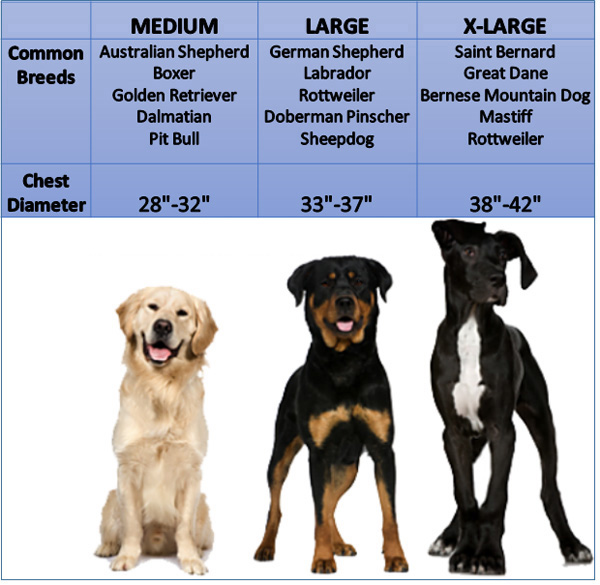 pack-size-chart-no-title.jpg