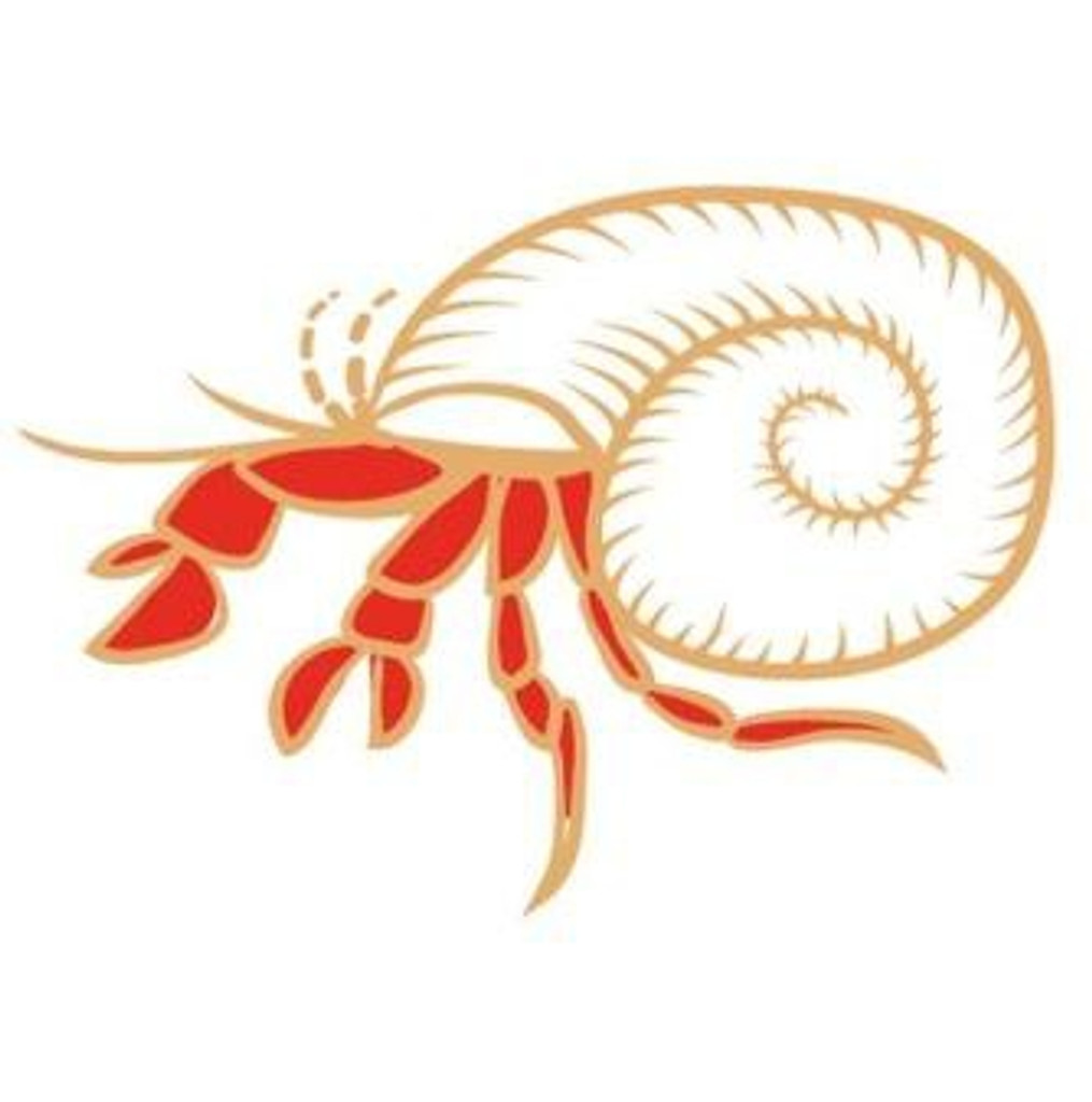 """Red Leg Hermit Crab. Red Leg incorporates the motif of the RedLeg Hermit Crab native to the Caribbean and named for its bright legs. It captures the spirit of Caribbean culture being laid back with an """"Irie"""" attitude, without a pirate in sight. Which makes it the perfect drink to be enjoyed with friends."""