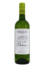 This dry, fruity wine boasts magnificent intensity and lovely open floral and citrus scents.