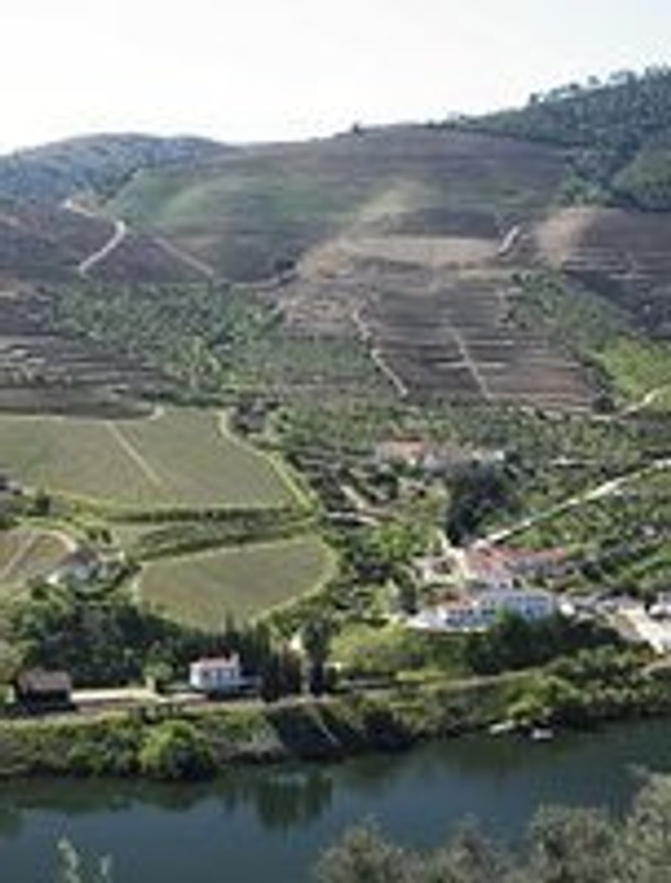 Port News April 2014 - Fladgate declared the following non classic vintage Ports - Taylor's Quinta de Vargellas, Fonseca Guimaraens and Croft Quinta da Roêda
