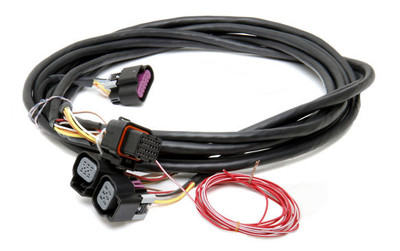 Holley Fuel Injection GM Dual Drive By Wire Harness, Part #558-411