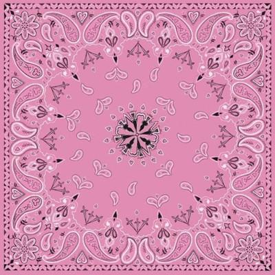 Paisley Bandana - Pink - B015