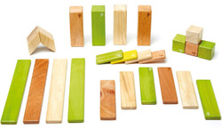 Tegu Magnetic Wooden Block - 24 Piece Jungle Set