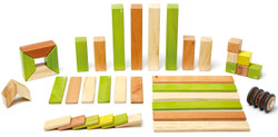 Tegu Magnetic Wooden Block - 42 Piece Jungle Set