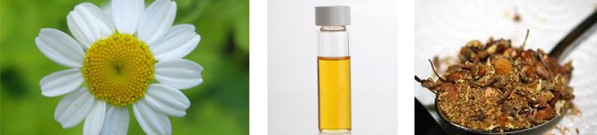 Chamonile Essential Oil - Top Organic Skin Care Products | Rosemira