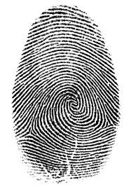 example-fingerprint.jpg