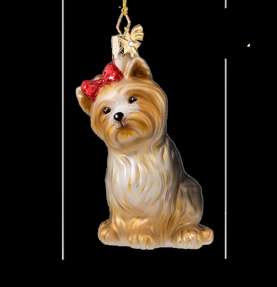 Yorkshire Terrier Glass Ornament