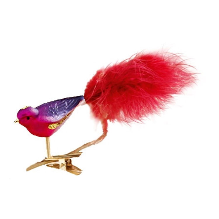 Pink, Purple and Gold Bird