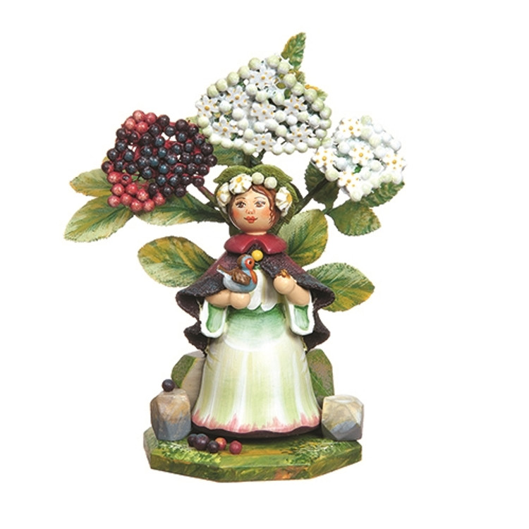 Elderberry 2016 Annual Flower Child