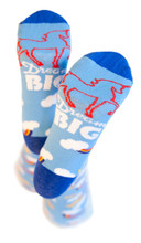 dream big pride socks with unicorn to help those with Down syndrome to attend college.