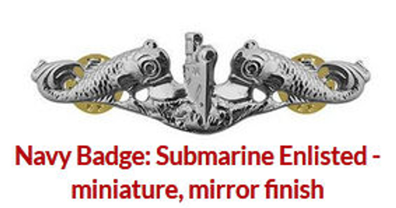 Enlisted Silver Dolphins mirror finish shiny Miniature breast pin.