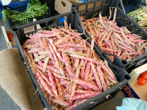Shelling beans are hugely popular in Italy and this variety is especially well-loved.