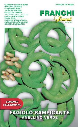 Bean Anellino Verde (57-17)
