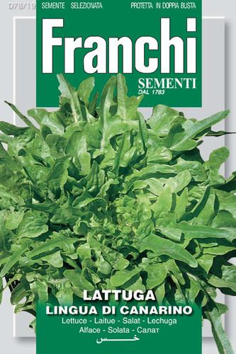 Lettuce Lingua di Canarino (78-19)
