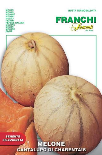 Melon Charentais (91-5)