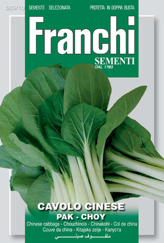 Pac Choi Chinese Cabbage (35-10)