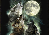 Happy Birthday Three Wolf Moon T-Shirt!