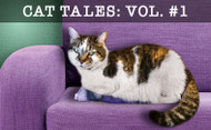 Cat Tales: Stories Of The Cat