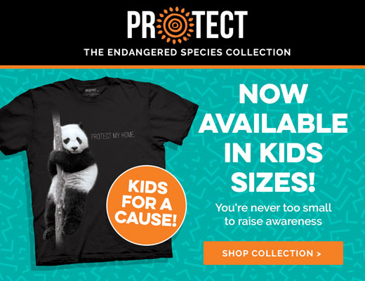 Kids Protect Collection