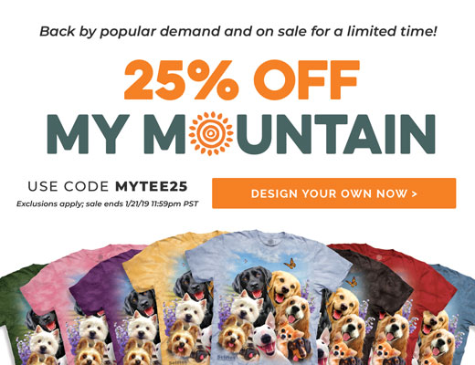 25% Off My Mountain