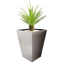 Madiera Conica Planter