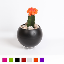 GreenBall Planter (Set of 3)