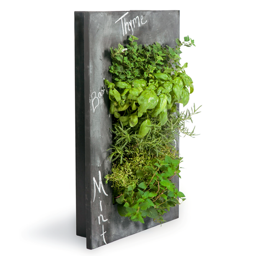 Grovert Wall Planter - Chalkboard Frame Kit