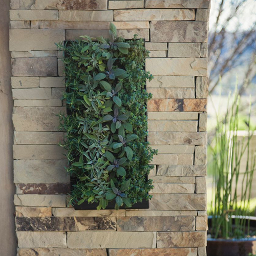 Grovert Living Wall Planter With Mounting Bracket