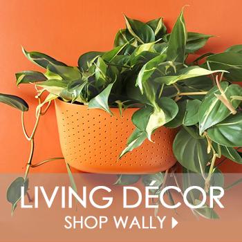 Shop Wally Living Wall Planter