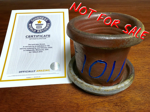 World Record Planter #101/159 and Certificate of Authenticity