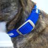 Mendota Night Viz Collar Hardware Detail