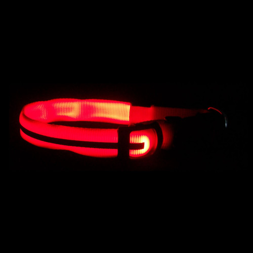 Nite Dawg LED Dog Collar Glow Light Detail