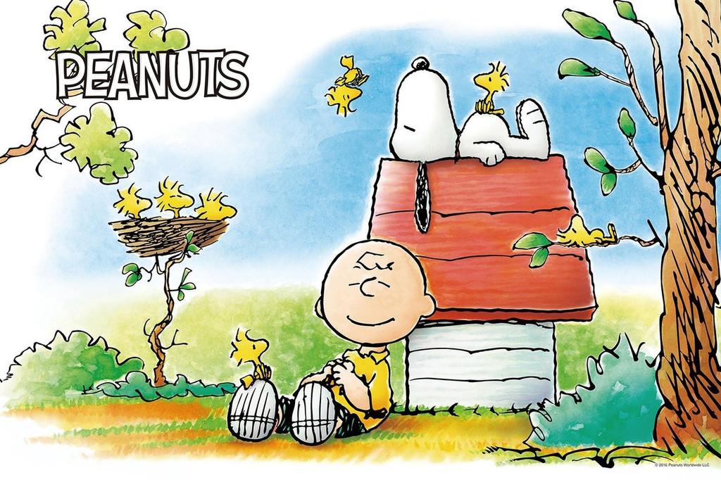 Epoch Jigsaw Puzzle 11-565s Peanuts Sleeping Snoopy (1000 Pieces)