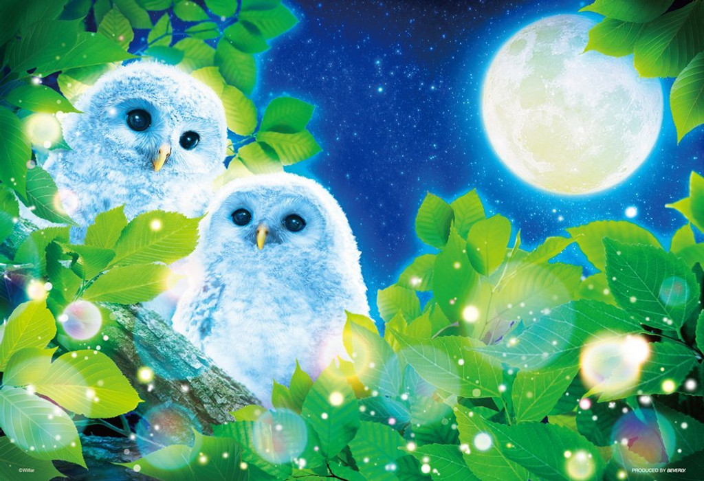 Beverly Jigsaw Puzzle 43-322 Moonlight Night Owls (300 Pieces)