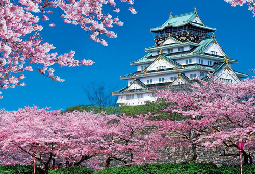 Beverly Jigsaw Puzzle 51-192 Japanese Scenery Osaka Castle Spring (1000 Pieces)