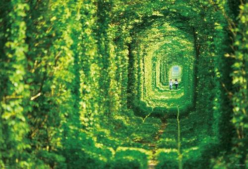 Beverly Jigsaw Puzzle 51-215 Tunnel of Love Klevan Ukraine (1000 Pieces)