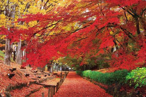 Epoch Jigsaw Puzzle 23-595 Japanese Scenery Ueda Castle Park Nagano (2016 S-Pieces)