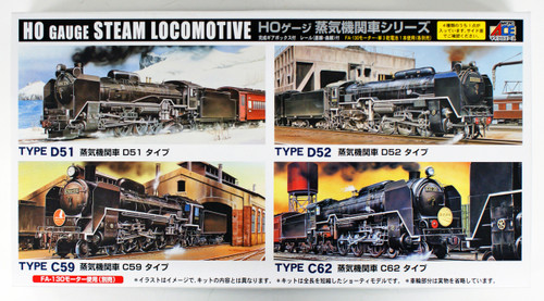 Arii 715017 HO Gauge Steam Locomotive Type D51 1/80 Scale Kit (Microace)