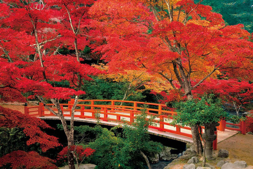 Epoch Jigsaw Puzzle 23-597 Autumn Leaves Momijidani Park Miyajima Hiroshima Japan (2016 S-Pieces)