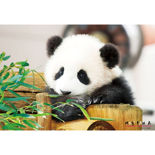 Beverly Jigsaw Puzzle L74-165 Pretty Pet Series Panda (150 L-Pieces)