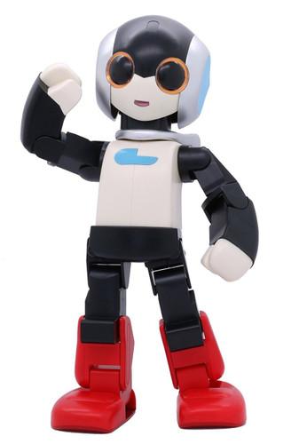 Fujimi 170497 Ptimo 005 Pla Robi 2 1/2 scale kit