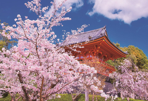 Epoch Jigsaw Puzzle 25-156 World Heritage Site Ninna-ji Kyoto Japan (300 Pieces)