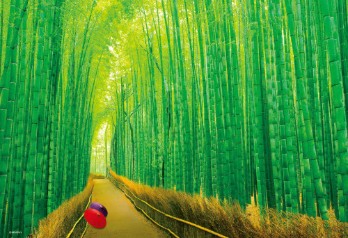 Beverly Jigsaw Puzzle 33-150 Saga Bamboo Forest Kyoto Japan (300 Pieces)