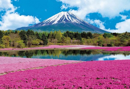 Epoch Jigsaw Puzzle 31-002 Mt. Fuji Moss Phlox Pink (1053 S-Pieces)