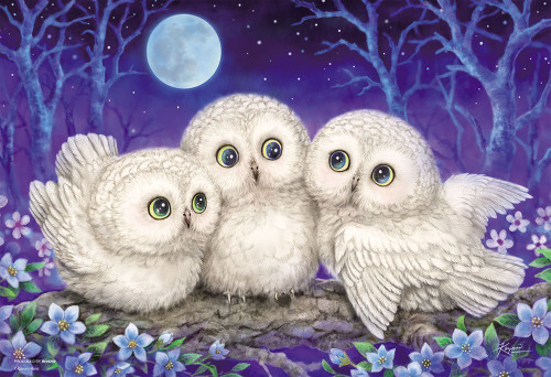Beverly Jigsaw Puzzle 33-153 Cute Animals Owl Triplets (300 Pieces)