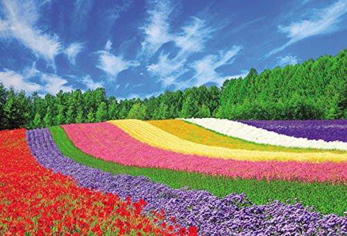 Beverly Jigsaw Puzzle 51-244 Furano Flowers Hokkaido Japan (1000 Pieces)